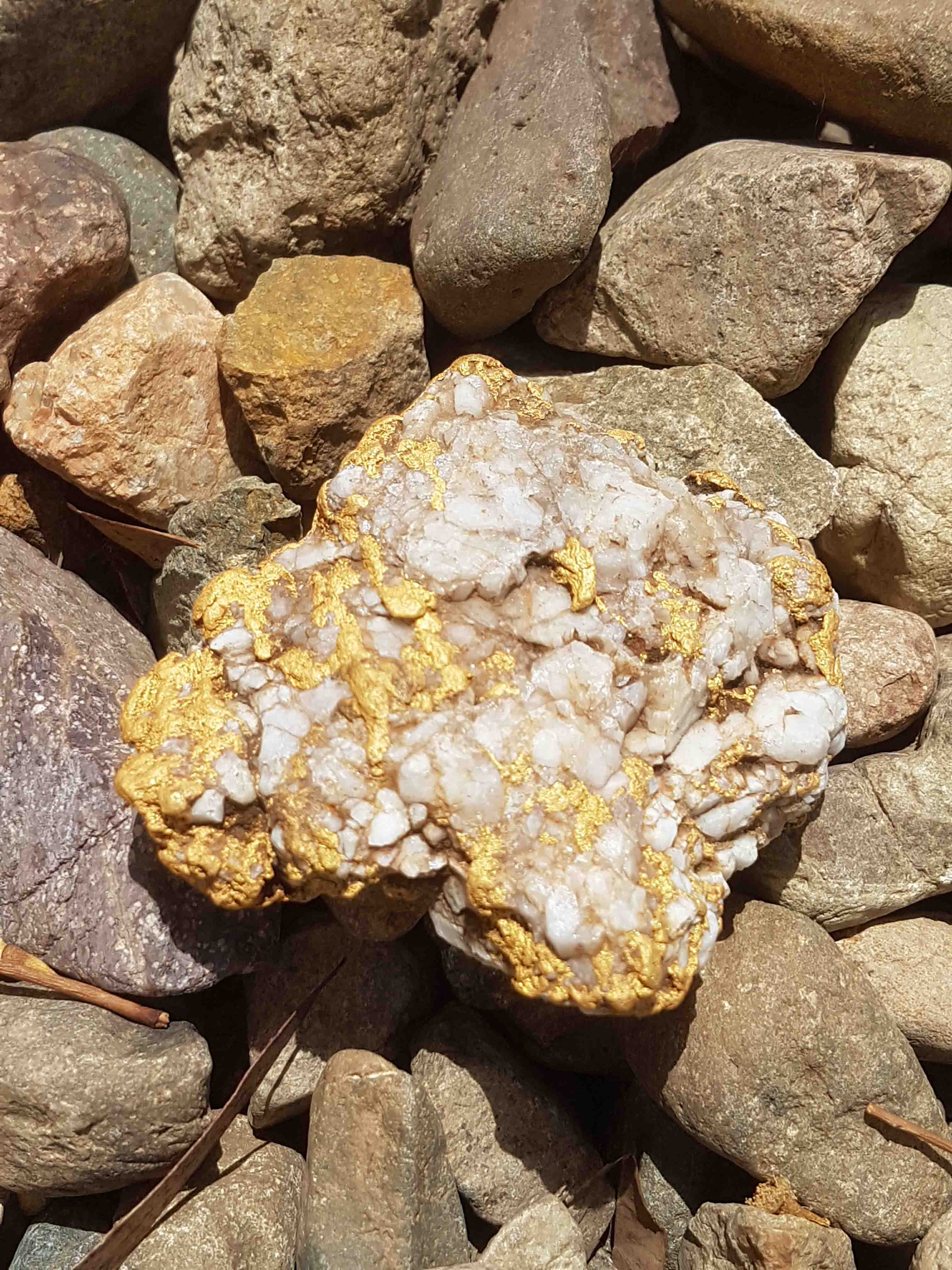 About Us - Gold Nuggets